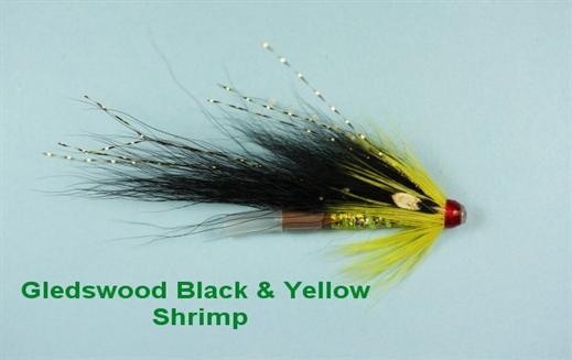 Gledswood Black and Yellow JC