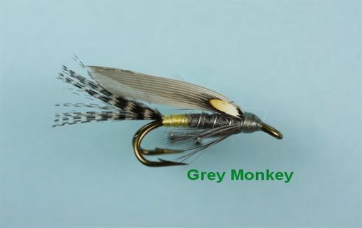 Grey Monkey JC