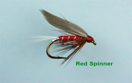 Red Spinner Winged Wet