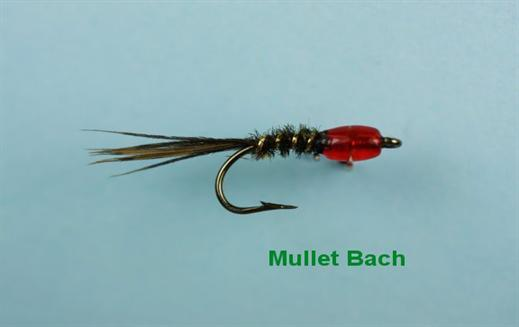 Mullet Bach