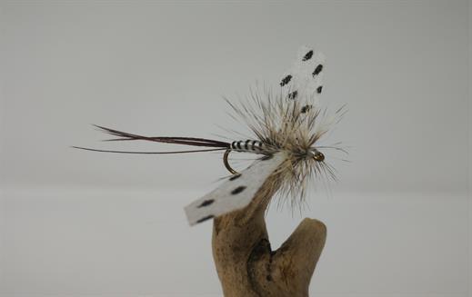 Moose Main Spent Mayfly