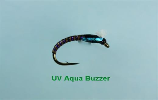 UV Aqua Buzzer