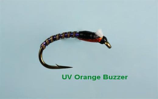 UV Orange Buzzer