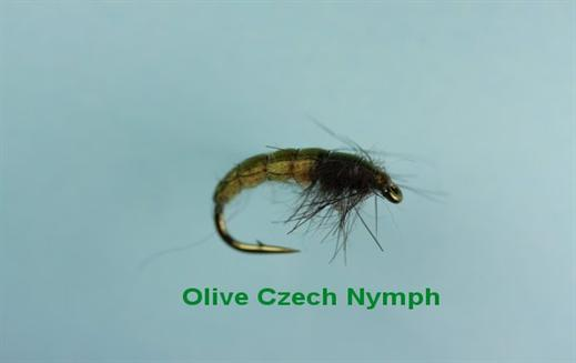 Czech Olive Nymph