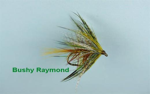 Bushy Raymond
