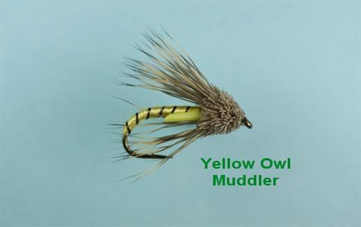 Yellow Owl Muddler