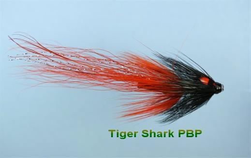 Tiger Shark JC Pot Belly Pig
