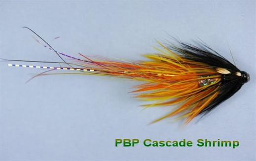 Cascade Shrimp JC PBP