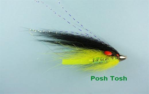 Posh Tosh Conehead