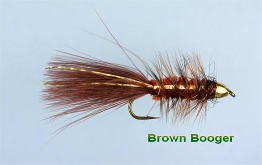 Brown Bullet Booger