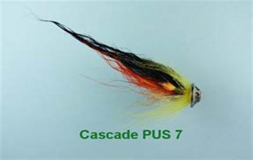 Cascade PUS 7