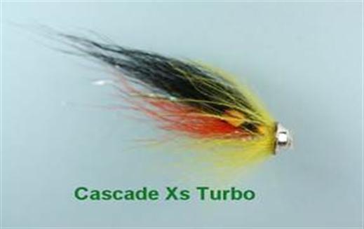 Cascade Xs Turbo