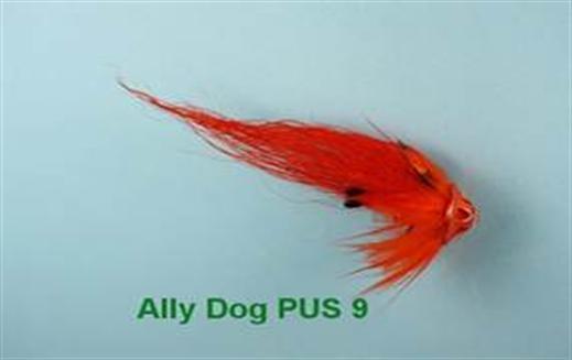 Ally Dog PUS 9