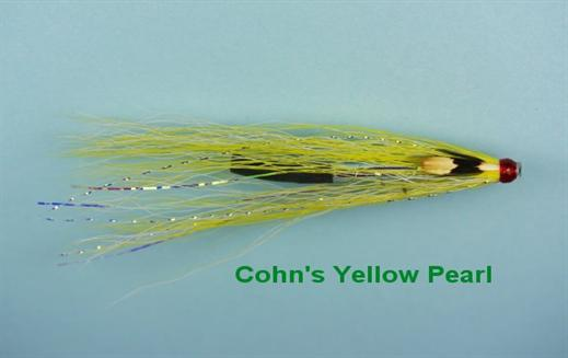 Cohns Yellow Pearl