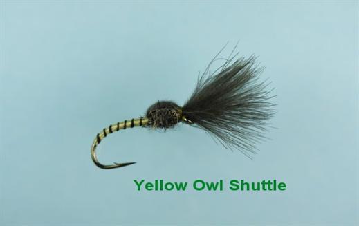 Shuttlecock Yellow Owl CDC