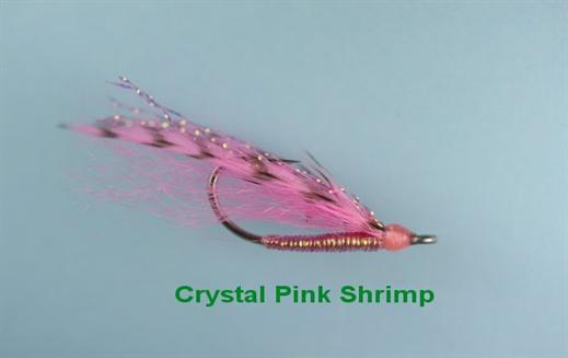 Crystal Pink Shrimp
