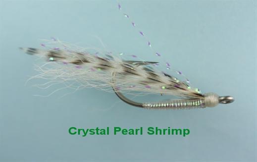 Crystal Pearl Shrimp