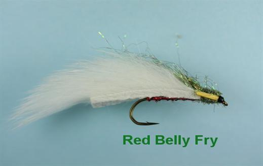 Red Belly Fry