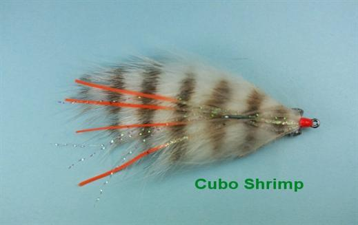 Cubo Shrimp
