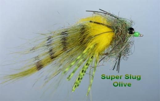 Super Slug Olive