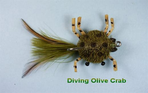 Diving Olive Crab