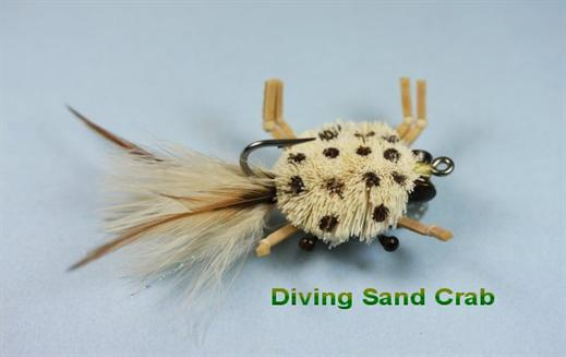 Diving Sand Crab