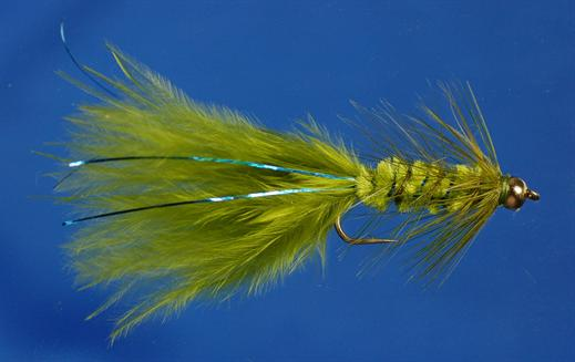 Blue Flash Woolly Bugger