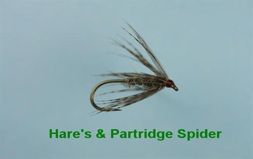 Hares and Partridge Spider