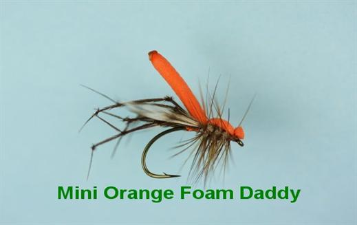 Mini Orange Foam Daddy