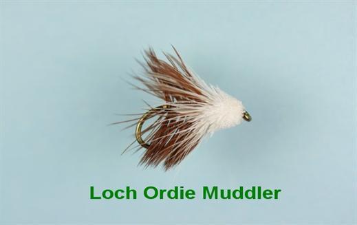 Loch Ordie Muddler