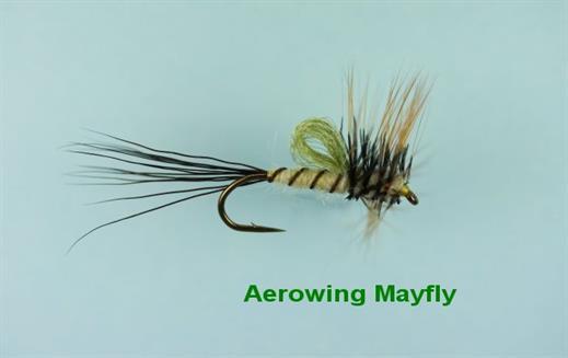 Aerowing Mayfly