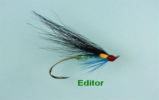 Editor Salmon Single