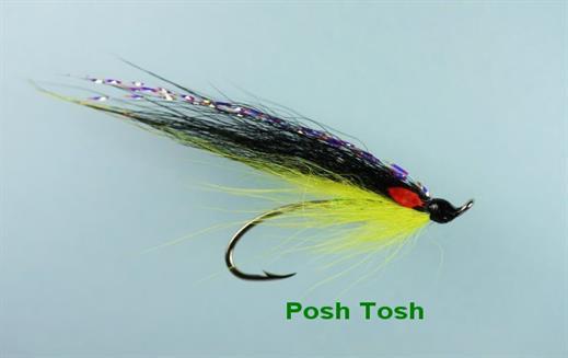 Posh Tosh Single