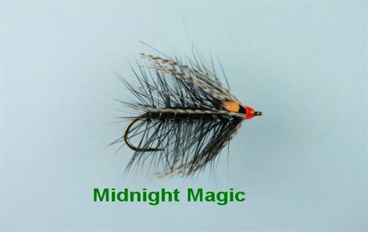 Midnight Magic JC Single