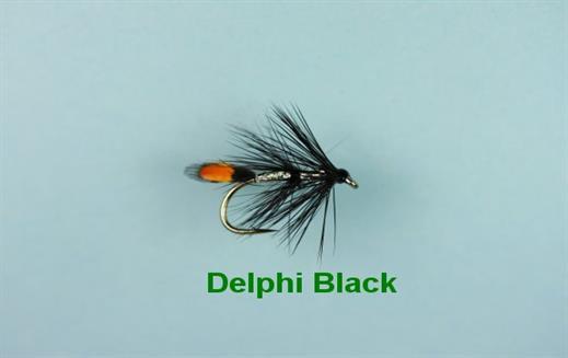 Delphi Black