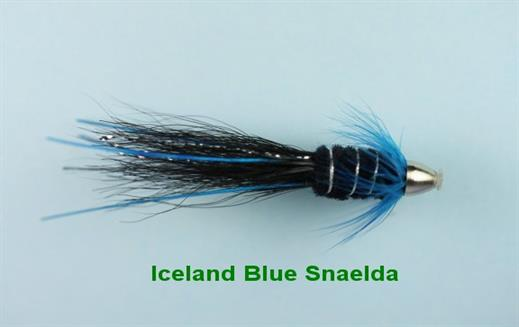 Iceland Blue Snaelda