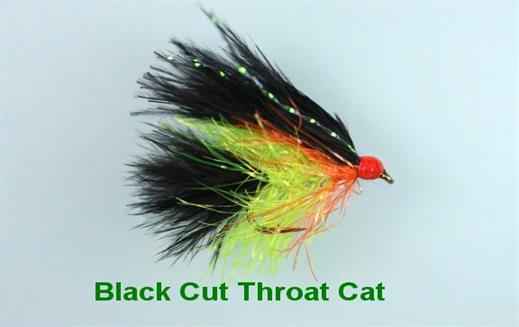 Black Cut Throat Cat