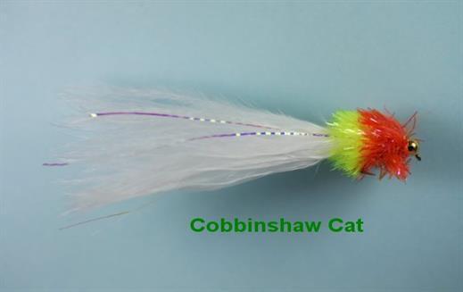 Cobbinshaw Cat