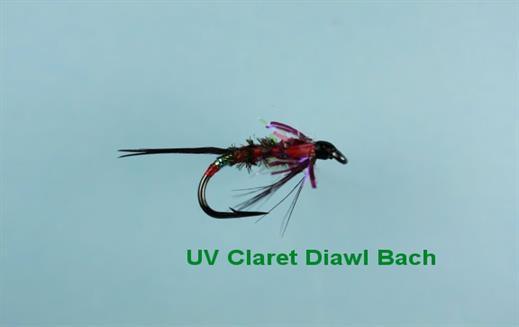 Diawl Bach UV Claret