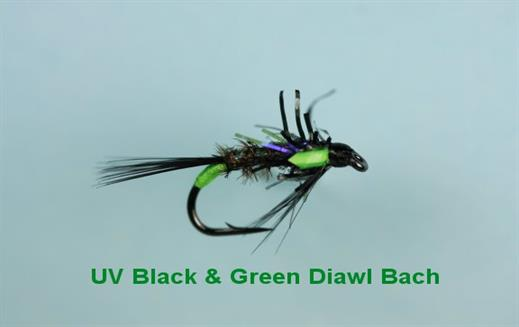 Diawl Bach UV Black n Green
