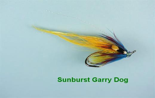 Sunburst Garry Dog