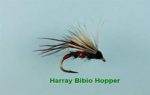 Harray Bibio Hopper
