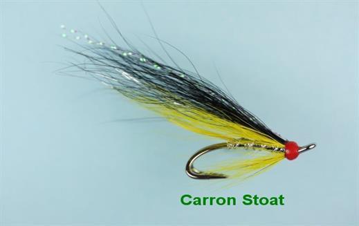 Carron Stoat