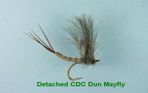 Detached CDC Dun Mayfly