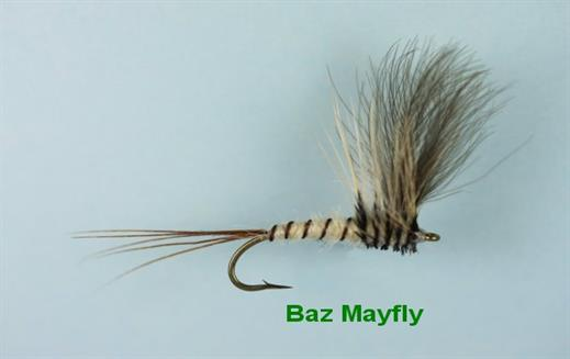 Baz Mayfly