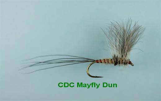 CDC Mayfly Dun