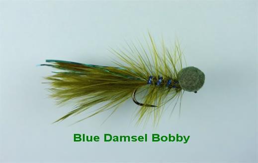 Blue Damsel Booby
