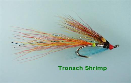 Tronach Shrimp JC