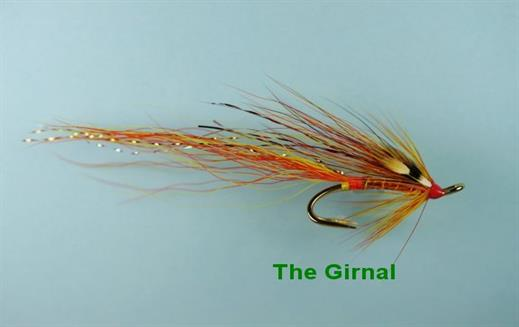 Girnal Shrimp