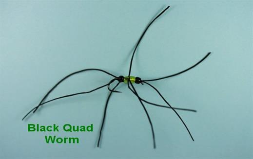 Black Quad Worm